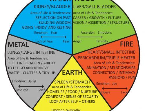 5 Elements Acupuncture