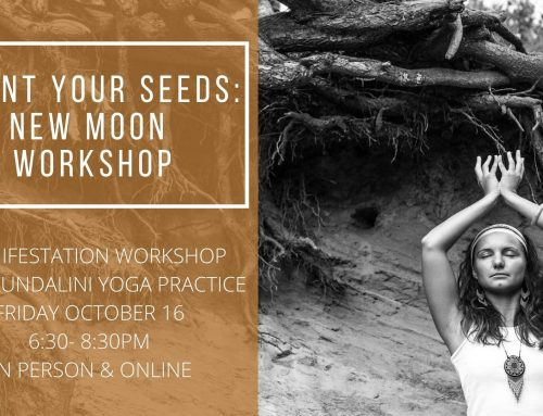 New Moon Manifestation Workshop 16/10