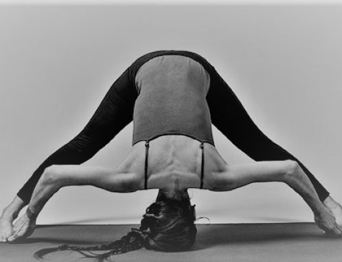 NEW weekly class offer: Alignment Yoga from 22 Aug